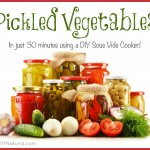 Simple Pickled Vegetables in a DIY Sous Vide Cooker