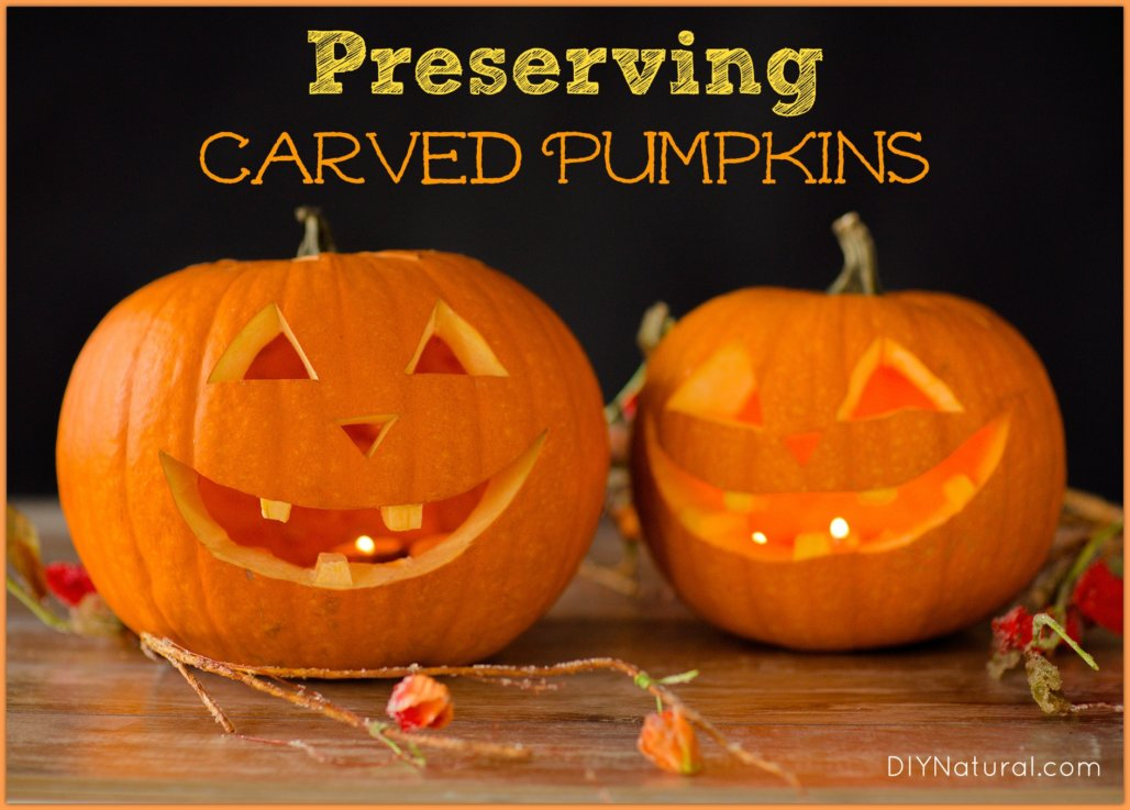 Preserving Carved Pumpkins How to