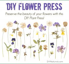 How to Make a DIY Flower Press to Dry Flowers