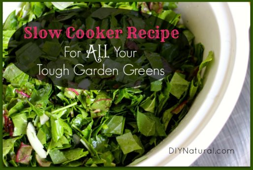 Recipe For Greens