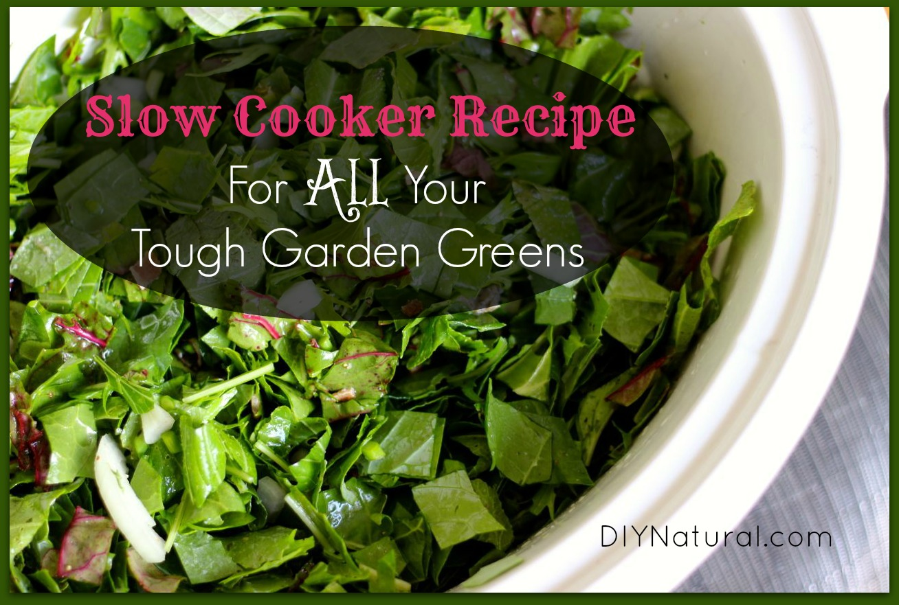 Recipe For Greens A Delicious Way To Use ALL Your Garden Greens