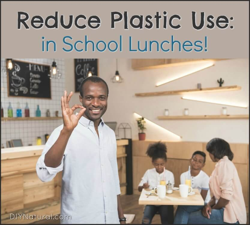 How to Reduce Plastic Use School Lunch