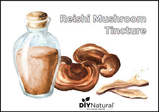 Reishi Mushroom Extract Tincture