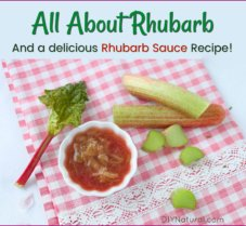 All About Rhubarb And An Easy Rhubarb Sauce Recipe