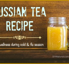 Russian Tea Recipe For Use During Cold & Flu Season