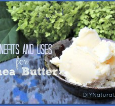 Shea Butter Benefits and Favorite Ways To Use It