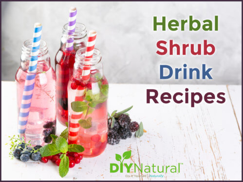 Shrub Recipe Drink