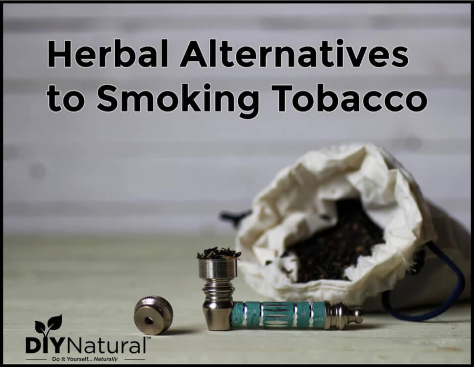 Beneficial Herbal Alternatives to Smoking Tobacco