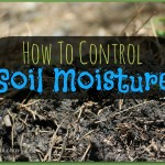 Soil Moisture: How to Deal with Excess and Lack
