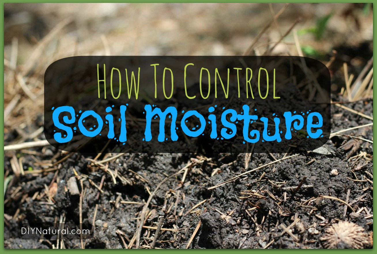 Soil moisture how to deal with too much and not enough for Soil moisture