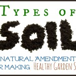 Types of Soil and Natural Fixes for Soil Problems