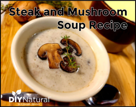 Steak Soup Recipe Beef Mushroom