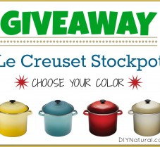 GIVEAWAY: Le Creuset Stockpot ($130 Value)