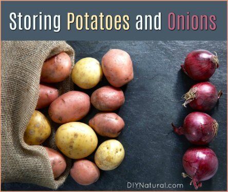 How to Store Potatoes How to Store Onions
