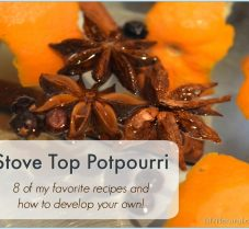 8 Simple Stove Top Potpourri Simmering Pot Recipes
