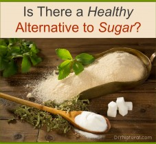 Are There Any Healthy Sugar Substitutes Out There?