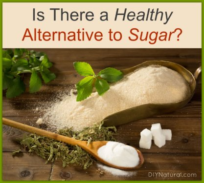 Sugar Alternatives