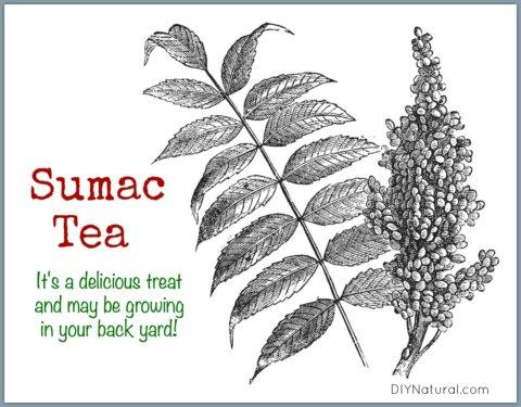 Sumac Tea Lemonade