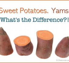 Sweet Potatoes and Yams, Is there a Difference?