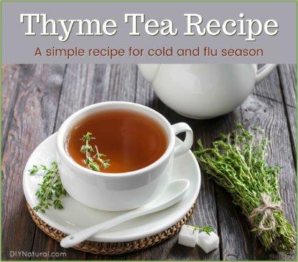 Thyme Tea Recipe