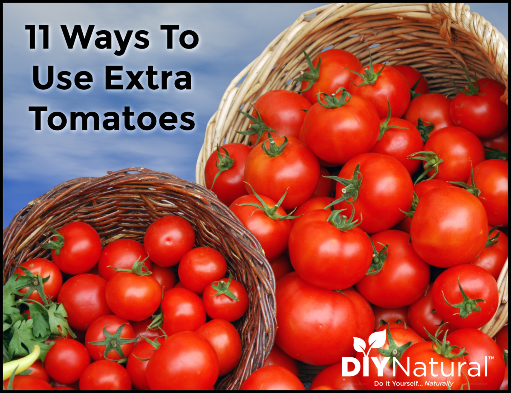 11 Unusual Ways To Use Up Your Tomato Bounty