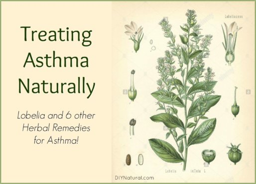 Treating Asthma Naturally Herbs