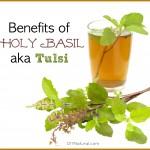 The Wonderful Health Benefits of Holy Basil (Tulsi)