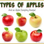 21 Apple Types and A Yummy Apple Dumpling Recipe