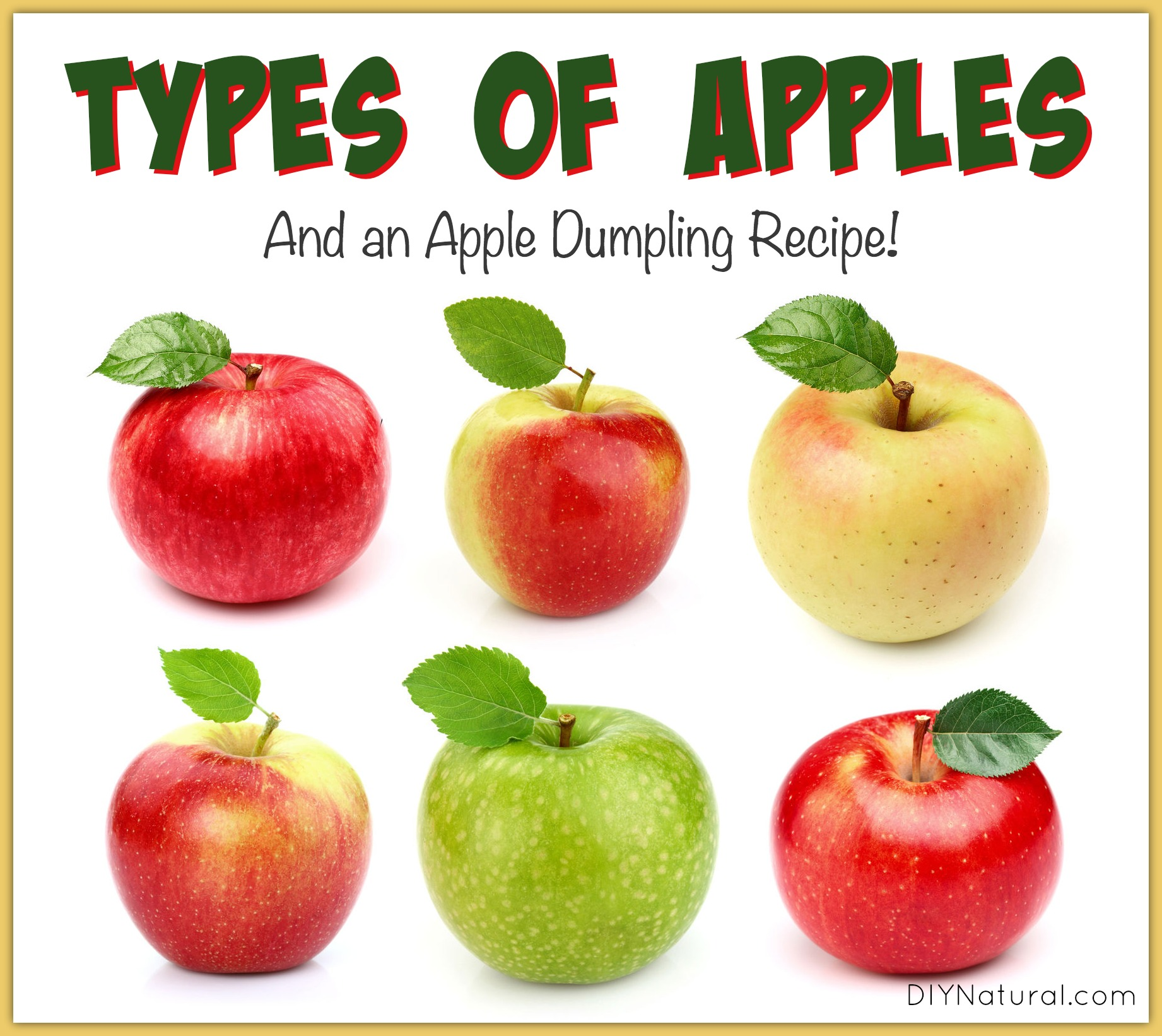 Varieties of apples in the world
