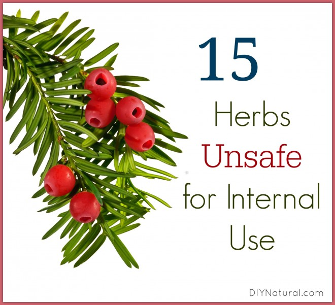Are the Herbs You're Using Safe for Internal Use?