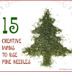 15 Great Ways To Use Your Extra Pine Needles