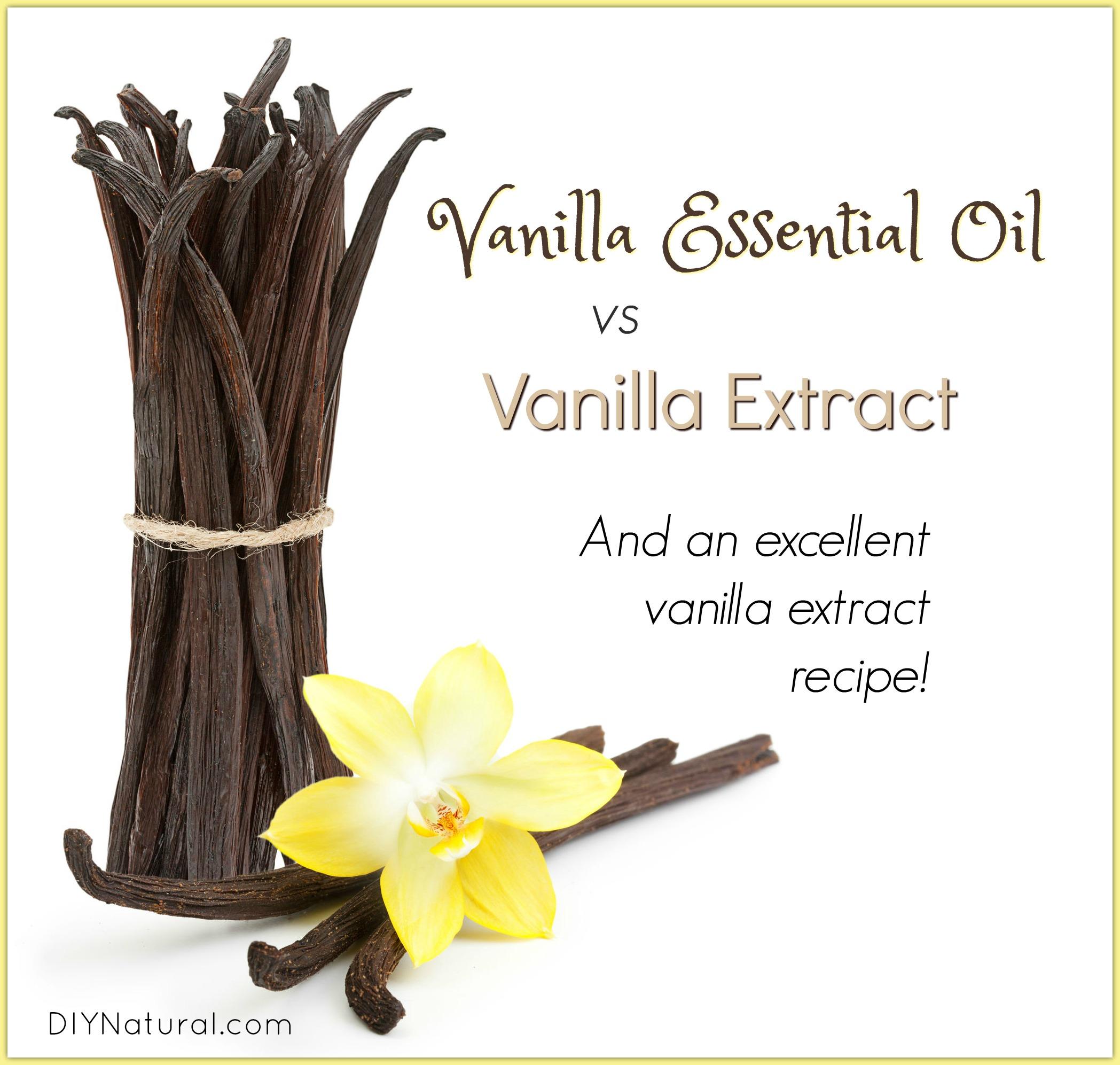 Vanilla Essential Oil Vs Vanilla Extract And Little Known Health Uses For Vanilla