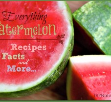 Everything You Need to Know About Watermelon