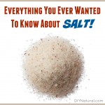 Everything You Ever Wanted to Know About Salt