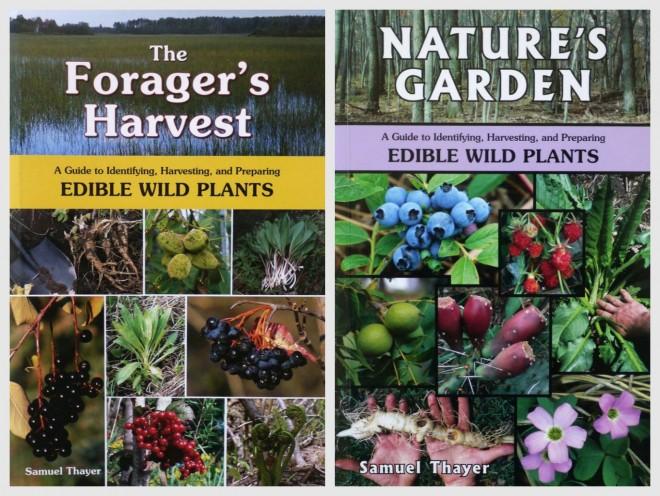 Edible Wild Plants 1