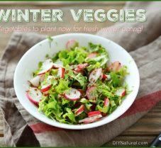 Vegetables To Start Now For Fresh Winter Eating
